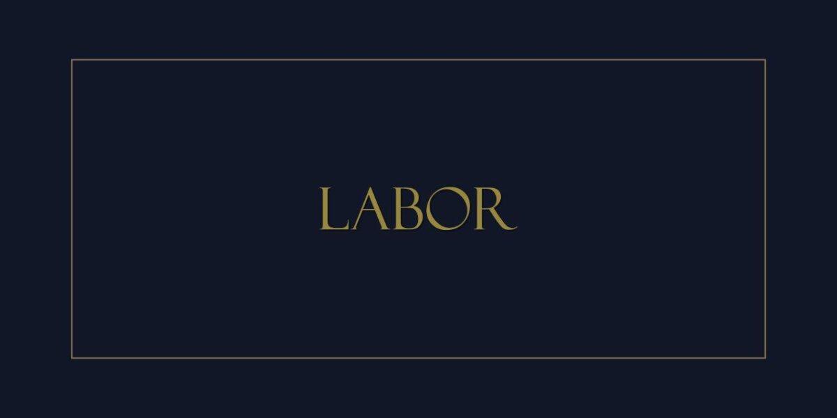 Jusufovic-Partners-Labor